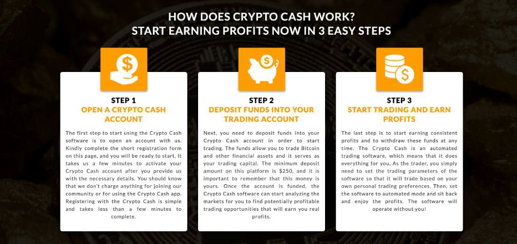 Crypto Cash how it works